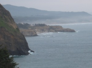 A beautifully misty shoreline.