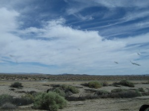 More sky, it's like it is everywhere...oh wait, it is :-)