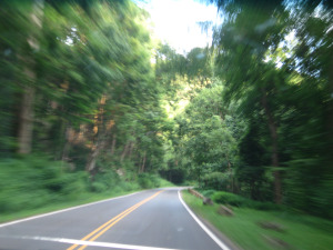 Hitting the open road in beautiful North Carolina!