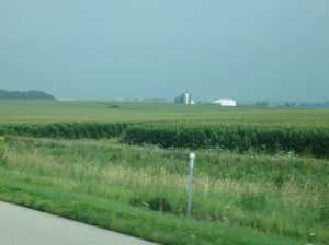 The beautiful farmlands of this country!!